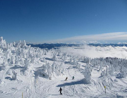 Big White Photo 6